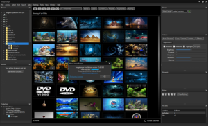 ImageRanger Pro Edition 1.7.6.1624 With Crack Download 2021